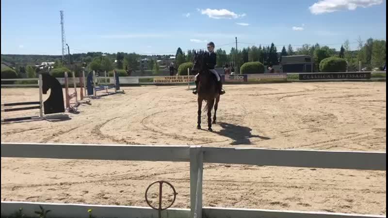 KK pony land 19.5.19 Андреева Алина на Трампе ,60см