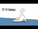 Ultimate Cat Yoga - Simons Cat