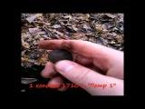 КОП монет 2013 Поиск монет в лесу