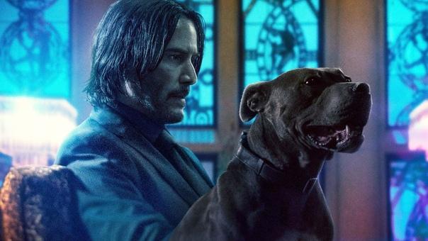 «Джон Уик 4» и «Пила: Спираль» перенесены на год TheWrap сообщает, что Lionsgate приняла решение отложить свой приоритетный проект из-за пандемии коронавируса. Лента с Киану Ривзом прибудет на