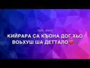 Красивая песня Безам бу са хьа дагца ♥