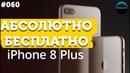 Как получить новый iPhone 8 plus бесплатно?!😎😱 iPhone 8 спустя месяц ФАБРИКА ОЗАРЕНИЯ