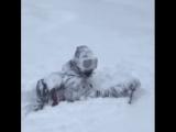 Когда много снега, но ты очень любишь лыжи)
