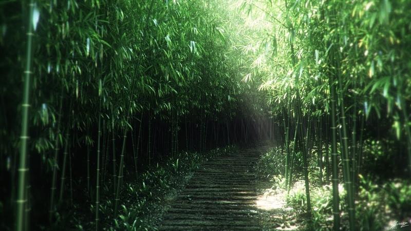 Beautiful Relaxing Music - Traditional Japanese Music, Healing Instrumental BGM