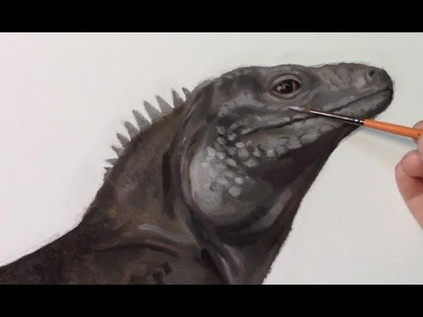 Yupari's Art Studio   Oil Painting of a Rock Iguana