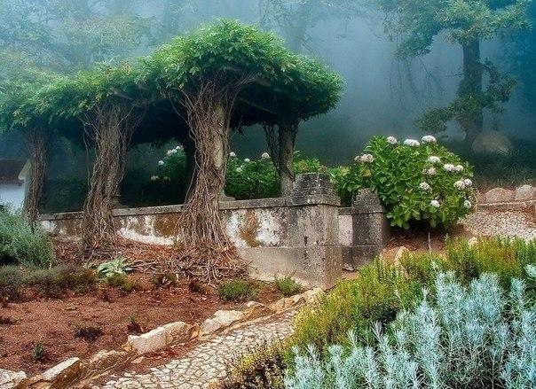 Старый сад в городе Синтра, Португалия