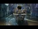 Serie de televisión Blindspot S4E7: Caso: Sol, Luna y la Verdad | Episodio completo en línea