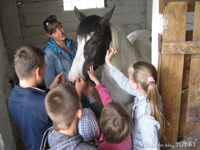 Детишки из социального приюта г. Бреста покатались на лошадях в д. Чернавчицы