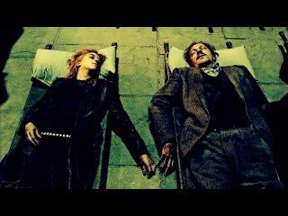Adele - Skyfall | Harry Potter (Красивое видео по всем частям Гарри Поттера)