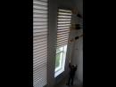 Рулонные шторы Зебра день-ночь усиленные с редуктором, 5 метровая высота. Цвет Бамбук серый.