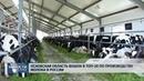 20.06.2018 Регион вошел в топ-30 по производству молока в России