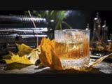 Золотая осень не помогает -  у россиян пропал аппетит, но спасает алкоголь!