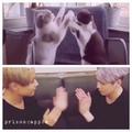 "STAY WITH JAEJIN on Instagram: ""2 years ago! ㅋㅋㅋㅋ~ #jaejin #leejaejin #hongki #leehongki #hongjae #ftisland @saico0111 @skullhong12"""