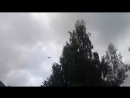 Как вертолёт квадрокоптер родил