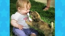 FUNNY DOG AND BABY TICKLING AND LAUGHING ! Dog loves Baby Compilation