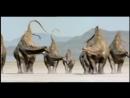 BBC Прогулки с динозаврами Баллада о большом Алле