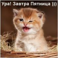 УРА!!!!ПЯТНИЦА