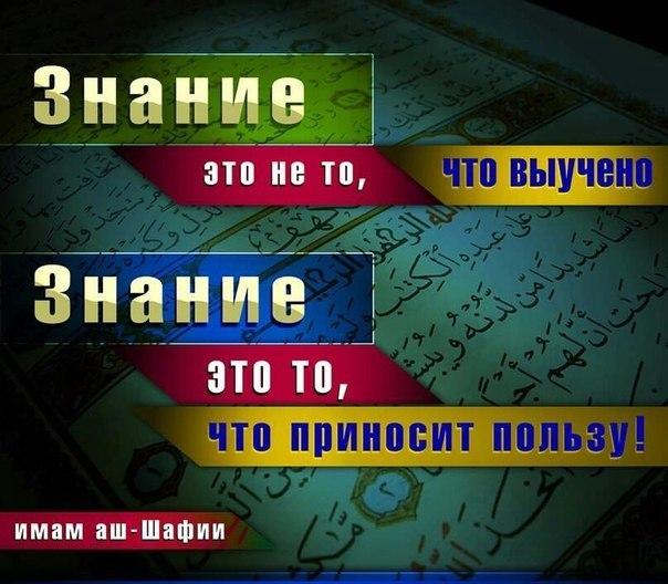 http://cs313324.vk.me/v313324151/2e53/4I9k2xMfM6k.jpg
