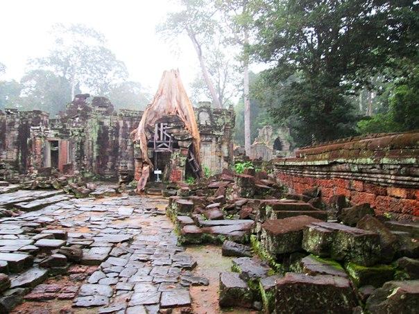 Наш загадочный Ангкор ZW-d_qHoaj4