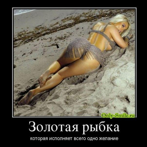 голые приколы: