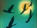 В мире животных — заставка (1974-2000) [480p]