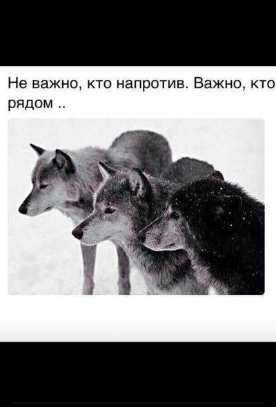 porno-foto-almashanovoy-kamili