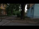 Банни хоп через дорогу дубль 2