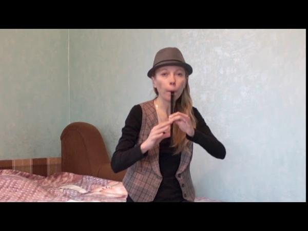 Ветер перемен ( песня из советского кинофильма Мери Поппинс возвращается) в исполнении Айрин