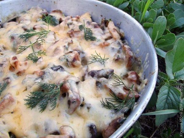 Жульен из лесных грибов рецепт с фото