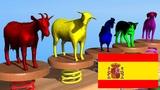 Animales de la Granja #h sonidos de animales para ni