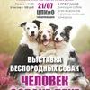 """Выставка беспородных собак """"Человек собаке друг"""""""