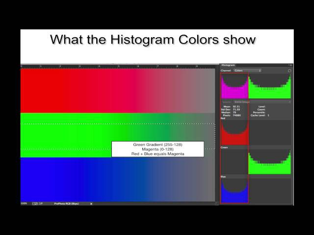 Everything you thought you wanted to know about Histograms