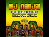 Dj Ninja - Ragga Jungle Mix 2015 Brand New Episode - 16.04.15