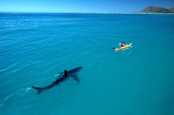 Для тех, кто не едет этим летом на море