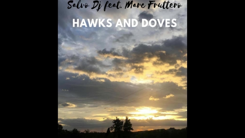 Salvo DJ. feat. Marc Fruttero: Hawks and Doves