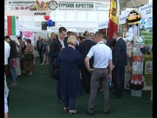Есть ли перспективы у малого бизнеса в Курской области?