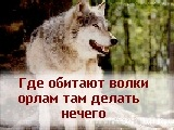 Алмас Гулария, 2 июня , Москва, id55516365