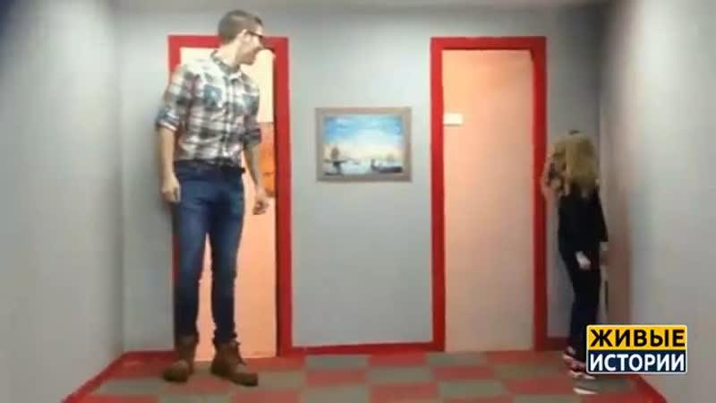 В комнате оптических иллюзий