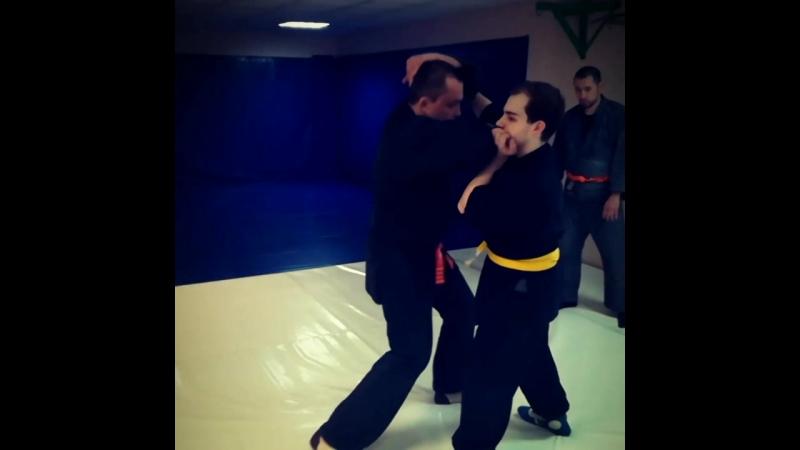 Modern Jujutsu Synthesis School - Atemi waza Part 2