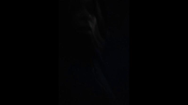 Даша Добровольская - Live