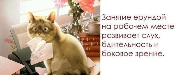 http://cs421022.vk.me/v421022345/582f/wbvX5PYQkjY.jpg