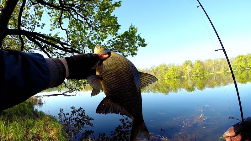 Рыбалка в Нерест с Ультралайтовым Спиннингом. Ловим Леща, Окуня и Красноперки на Микроджиг