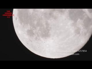 Астроном снял на видео почти четыре десятка НЛО возле Луны