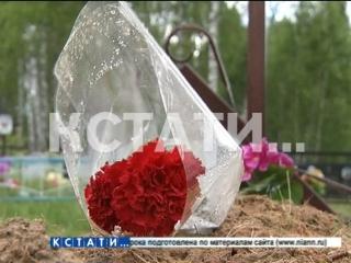 «Синяя борода» в Сосновском районе - муж отсидел 14 лет за убийство первой жены, освободившись женился снова, и снова совершил у