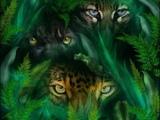 Suduaya feat.Amin - Jungle Heartbeat