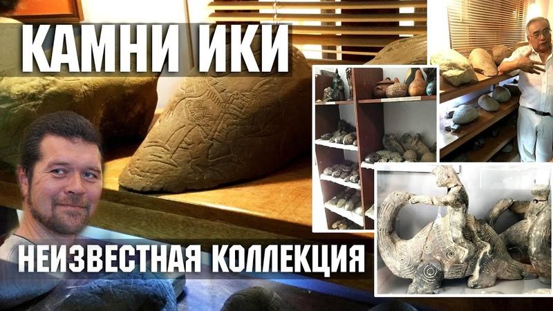 Андрей Жуков Люди и динозавры Белые камни Ики Новые находки