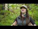 Аляска семья из леса Alaskan Bush People 2