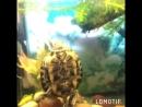 Фрося черепах
