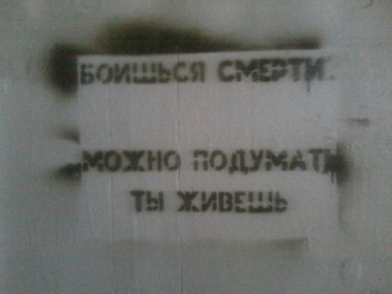http://cs419717.vk.me/v419717272/c282/Ki2tkaQQF4s.jpg