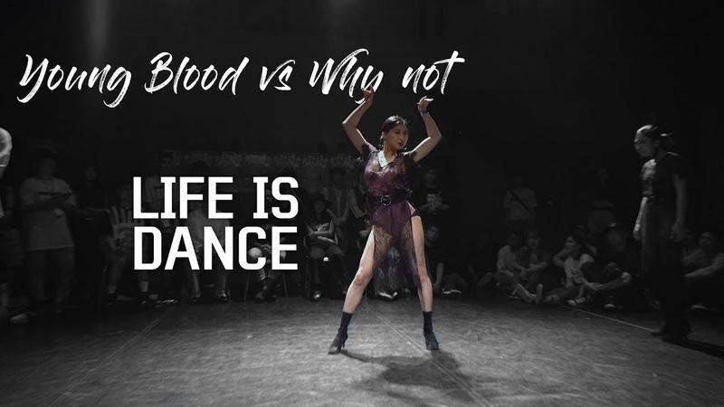 2018 LIFE IS DANCE vol.4 l Young Blood(KromBoogie Zin) vs Why Not(BisuCherry) l top 16-8